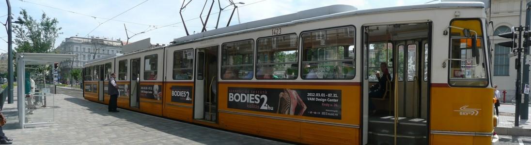 bodies2-min